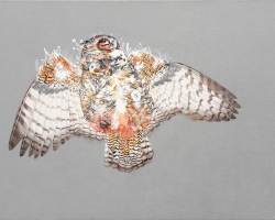 "Melinda Josie Great Horned Owl18 x 26"" Oil on linen. 2010"
