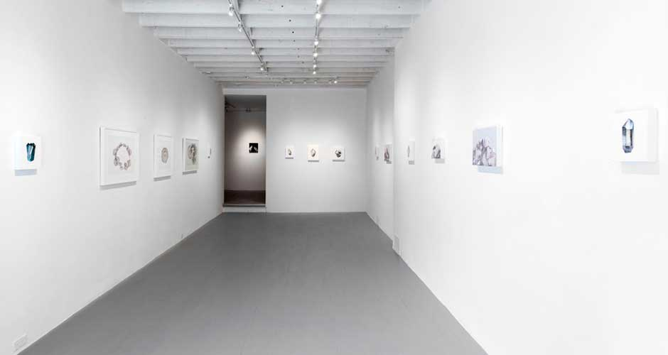 Carly WaitoMicrogeographica Installation View