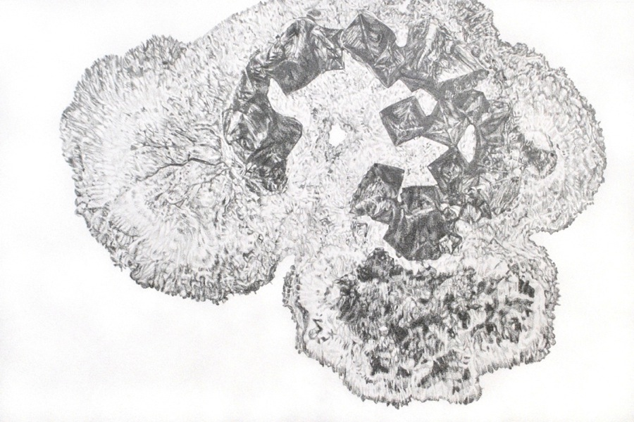 Carly Waito, Salt Growth Arial View I, 2013