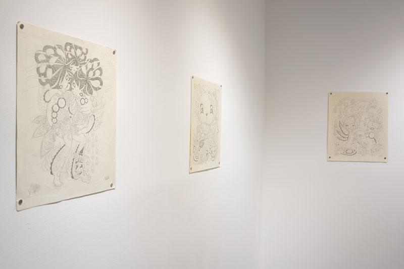 Junko Mizuno Gallery Installation