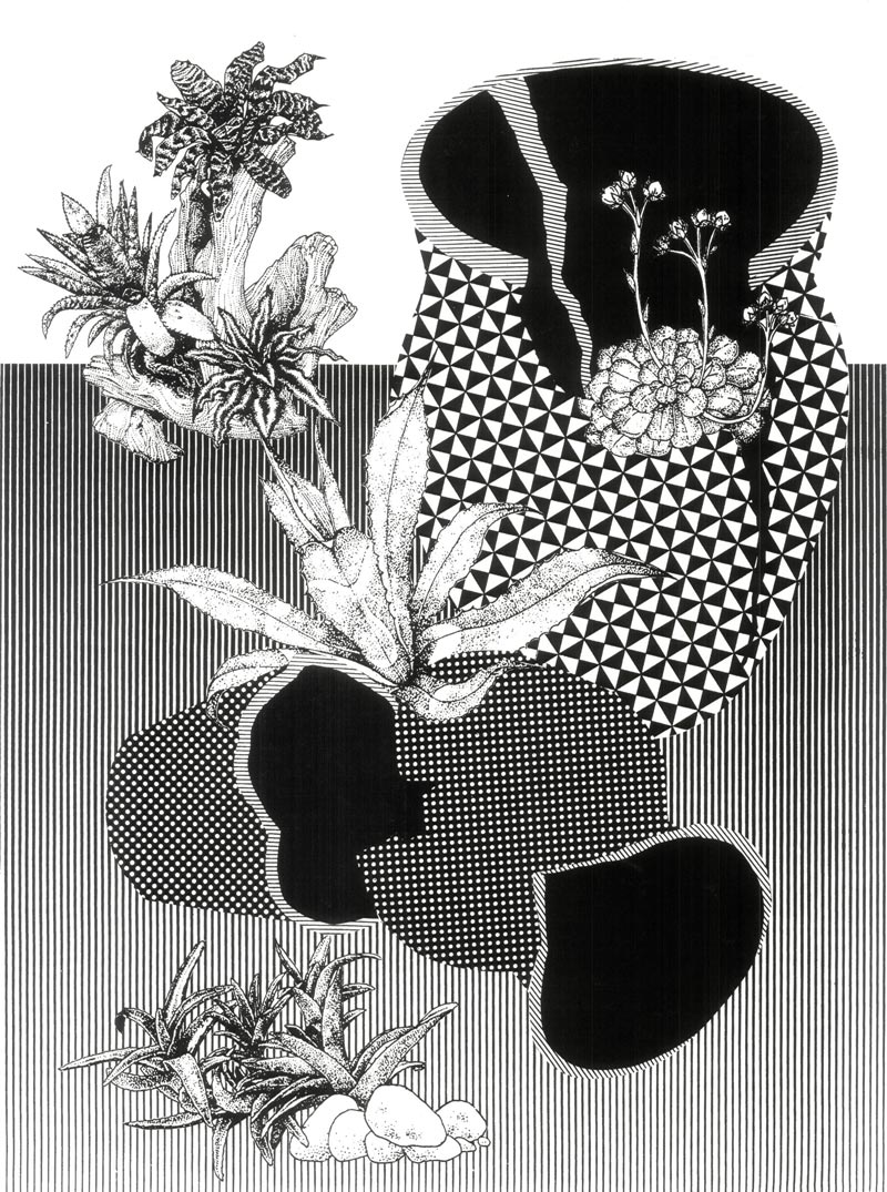 Alicia NautaSome Day Plants Will Cover Everything, 2015Screenprint. S/N Edition of 25. 18 x 24 in.