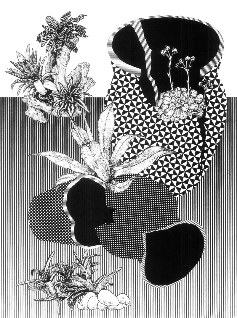 Alicia NautaSome Day Plants Will Cover Everything, 201518 x 23.5 in. Silkscreen. S/N edition of 25.