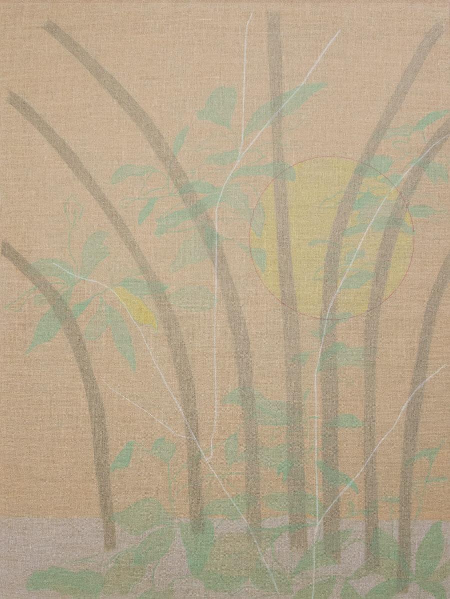 Hanna HurWhose sun is this, 201530 x 40