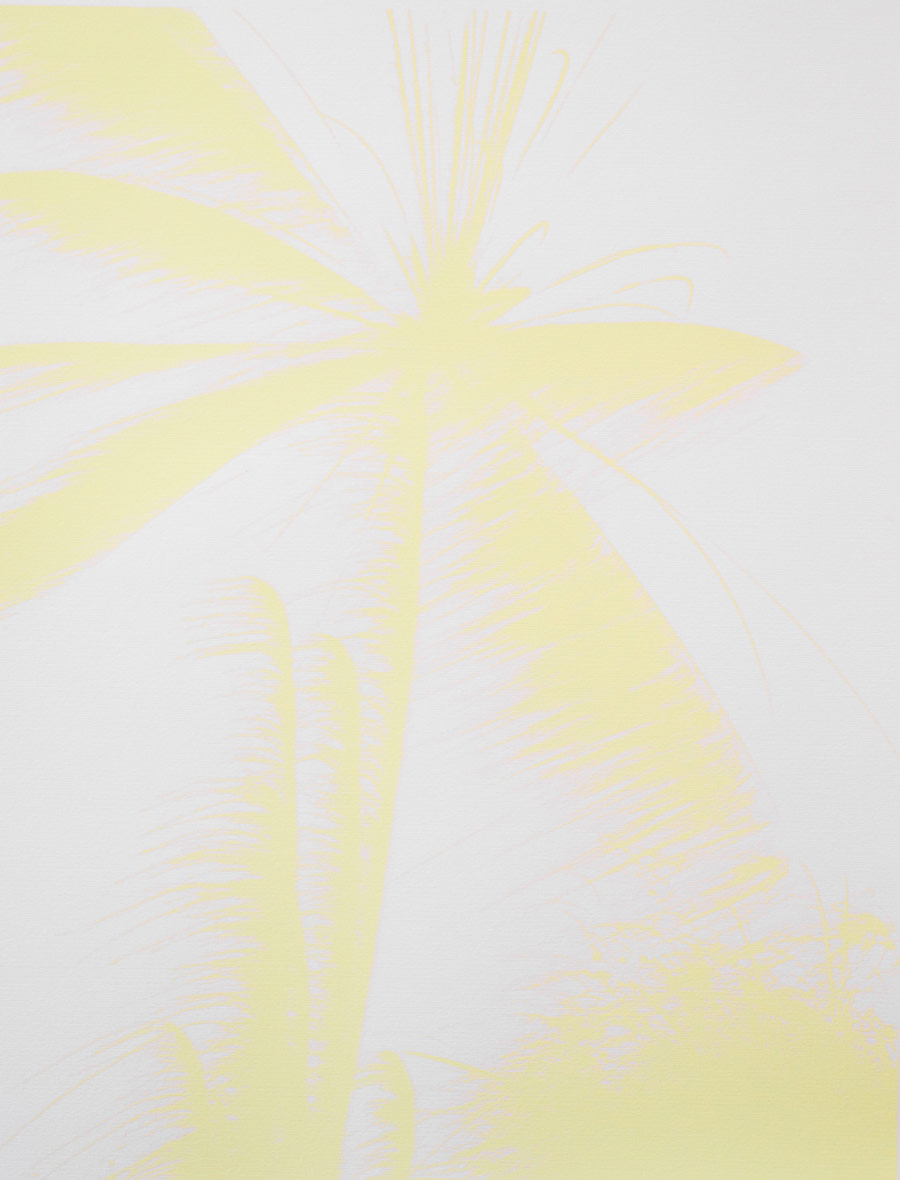 Josh ThorpeFireworks (variation 1), 201517 x 22 in. 18.75 x 23.25 in. framed. Screen print, edition of 6.
