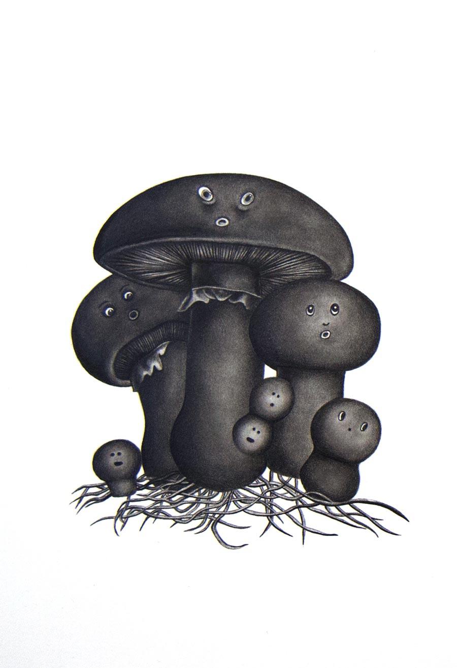 Adrienne KammererThe Unfortunate Fungi, 2015Graphite on paper. 7 x 10 in. unframed, 10.25 x 13.5 in. framed