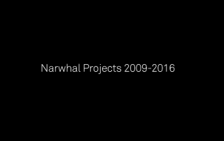 narwhal2009-2016